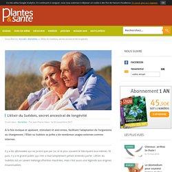Plantes et santé - Magazine de la phytothérapie - L'élixir du Suédois, secret ancestral de longévité