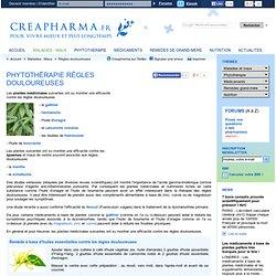 Phytothérapie règles douloureuses - Huiles essentielles règles