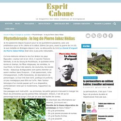 Phytothérapie : le leg de Pierre Jakez Hélias, Esprit Cabane, idees creatives et ecologiques