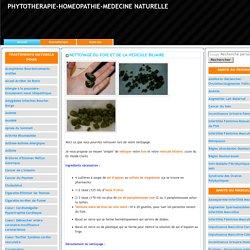 NETTOYAGE DU FOIE ET DE LA VESICULE BILIAIRE-PHYTOTHERAPIE-HOMEOPATHIE-MEDECINE NATURELLE
