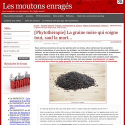 [Phytothérapie] La graine noire qui soigne tout, sauf la mort…