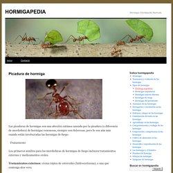 Picadura de hormiga » HORMIGAPEDIA