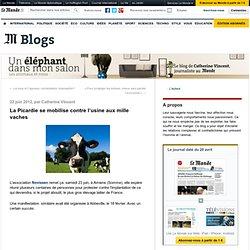 La Picardie se mobilise contre l'usine aux mille vaches