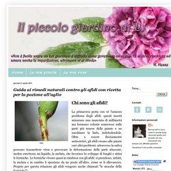 Il piccolo giardino di L.: Guida ai rimedi naturali contro gli afidi con ricetta per la pozione all'aglio
