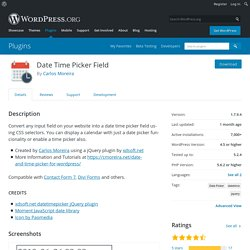 Date Time Picker Field – WordPress plugin