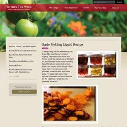 Basic Pickling Liquid - Recipe by Kirsten Dixon