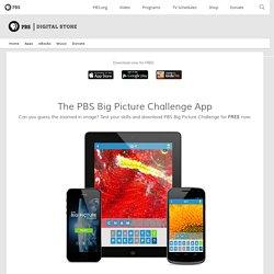 Big Picture Challenge