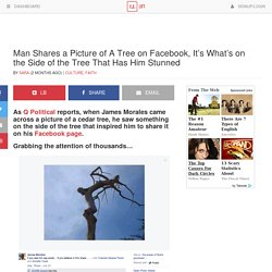 Man Shares a Picture of A Tree on Facebook, It's What's on the Side of the Tree That Has Him Stunned
