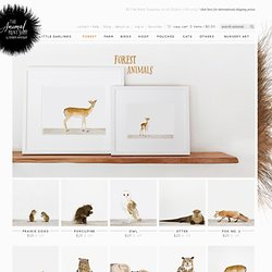 Pictures of Forest Animals