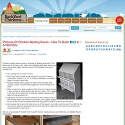 Chicken Nesting Boxes - Back Yard Chickens