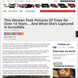 This Woman Took Pictures Of Trees for Over 14 Years... And What She's Captured Is Incredible
