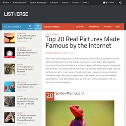 Top 20 Real Pictures Made Famous by the Internet - StumbleUpon