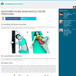 36 Pictures To See Which Muscle You're Stretching - Page 4 of 4 - Freaking Love Facts