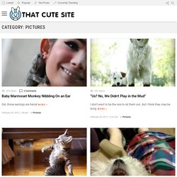 Pictures | That Cute Site - Part 6