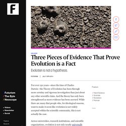 Three Pieces of Evidence That Prove Evolution is a Fact