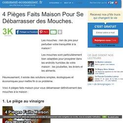 4 Pièges Faits Maison Pour Se Débarrasser des Mouches.
