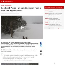 Lac Saint-Pierre : un comité citoyen vient à bout des algues bleues