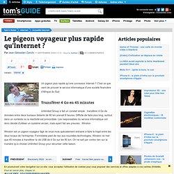 Le pigeon voyageur plus rapide qu'Internet ?