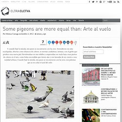 Some pigeons are more equal than: Arte al vuelo | Cultura Colectiva