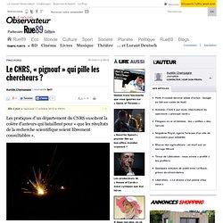 Le CNRS, «pignouf» qui pille les chercheurs?
