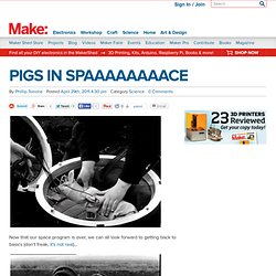 PIGS IN SPAAAAAAAACE