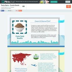 Piktochart Infographic Editor