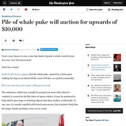 Pile of whale puke will auction for upwards of $10,000