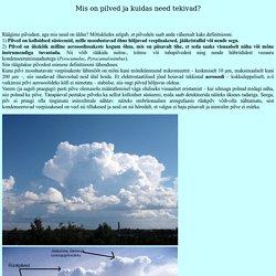 Pilved ja nende tekkimine