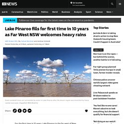 Lake Pinaroo fills for first time in 10 years as Far West NSW welcomes heavy rains