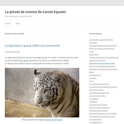 La pincée de science de Carole Equeter