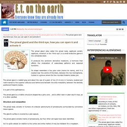 The pineal gland and the third eye, how you can open it and activate it - E.T. on the earthE.t. on the earth