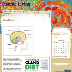 Cosmic Living