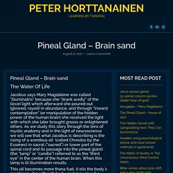 Pineal Gland – Brain sand – Peter Horttanainen