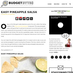 Easy Pineapple Salsa - Budget Bytes