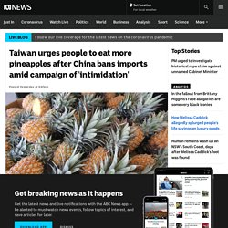 Taiwan urges people to eat more pineapples after China bans imports amid campaign of 'intimidation'
