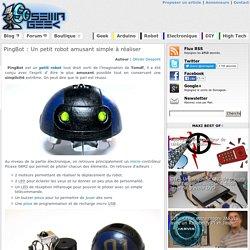PingBot : Un petit robot amusant simple à réaliser