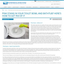 How to Get Rid of Pink Stains in Your Toilet Bowl and Bathtub