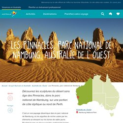 Les Pinnacles, parc national de Nambung, Australie Occidentale, Australie