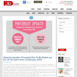 Pinterest Rolled out Promoted Pins For all US Users From 1st January 2015