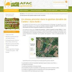 Un réseau pionnier dans la gestion durable de l'arbre « hors forêt »