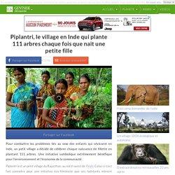 Piplantri, le village en Inde qui plante 111 arbres chaque fois que nait une petite fille