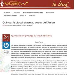 Quinoa: le bio-piratage au coeur de l'Anjou