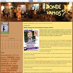 Juin 2013 Piratage du site Pédopolis
