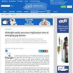 PIG333 11/12/19 Pirbright study uncovers replication sites of emerging pig disease
