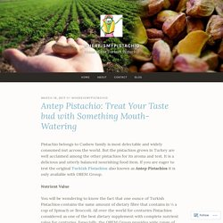 Antep Pistachio: Treat Your Taste bud with Something Mouth-Watering – WhereIsMyPistachio
