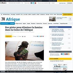 Des pistes pour éliminer la famine dans la Corne de l'Afrique