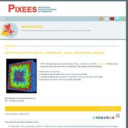 Pistes pour le TIPE 2016-2017 «Optimalité : choix, contraintes, hasard». — Pixees