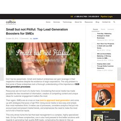 Small but not Pitiful: Top Lead Generation Boosters for SMEs