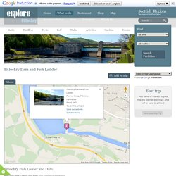 Pitlochry Fish Ladder and Dam