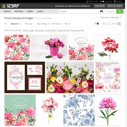 Pivoine Banque D'Images, Vecteurs Et Illustrations Libres De Droits
